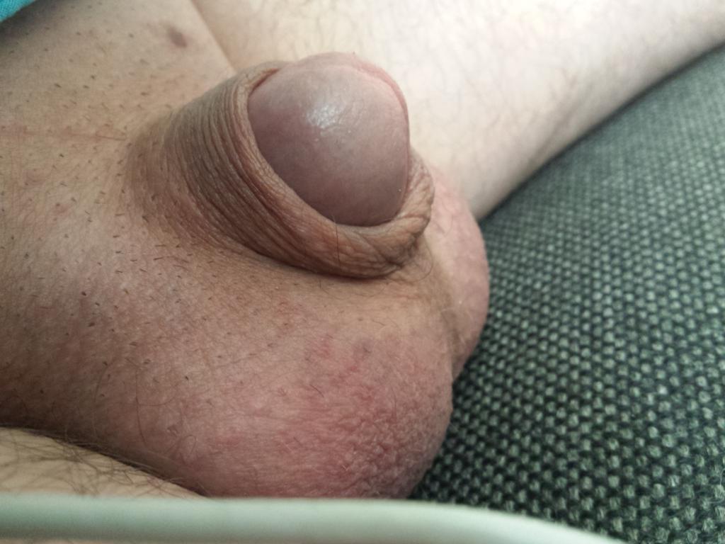Show me penises