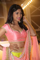 HeyAndhra Roshini at Saptagiri Express Audio Launch HeyAndhra.com