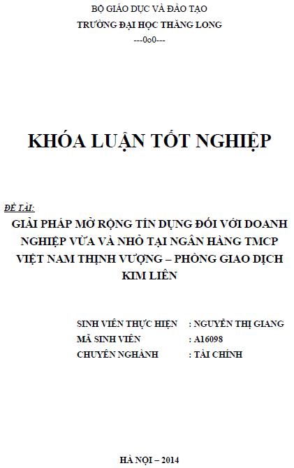 Giải pháp mở rộng tín dụng đối với doanh nghiệp vừa và nhỏ tại ngân hàng TMCP Việt Nam Thịnh Vượng phòng giao dịch Kim Liên