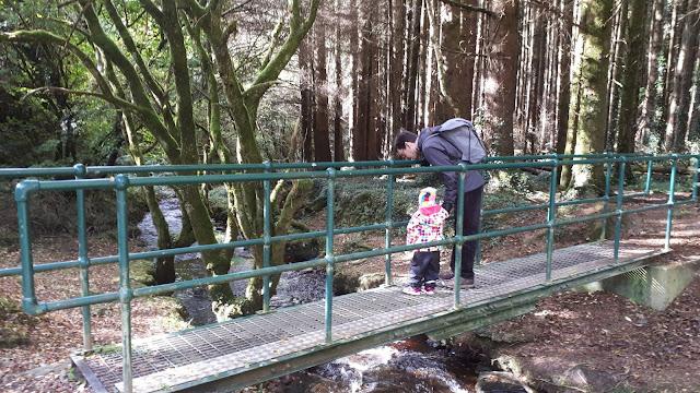 Isä ja tytär, silta, puro, metsä