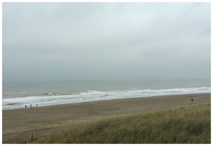 Northern Sea in Egmond aan Zee, Netherlands