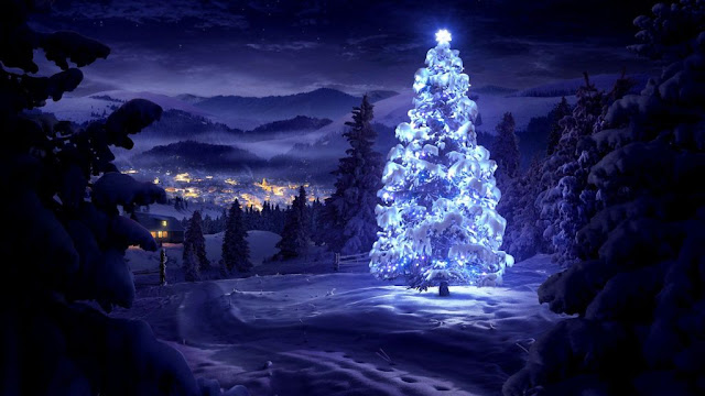 merry Christmas tree hd wallpaper