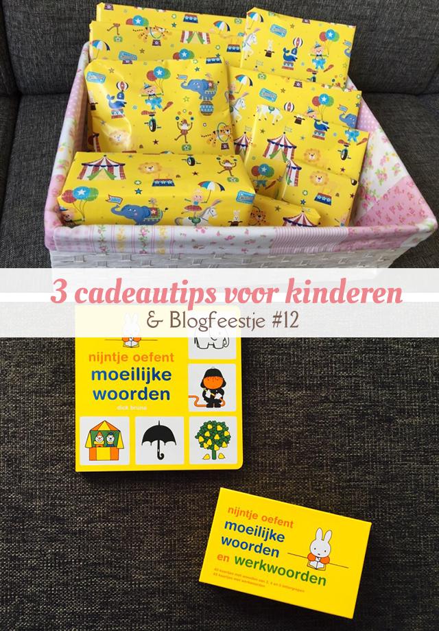 3 cadeautips voor kinderen blogfeestje 12 mizflurry for Cadeautips voor kinderen