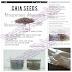 Tujuh Kebaikan Chia Seed - Kuantan