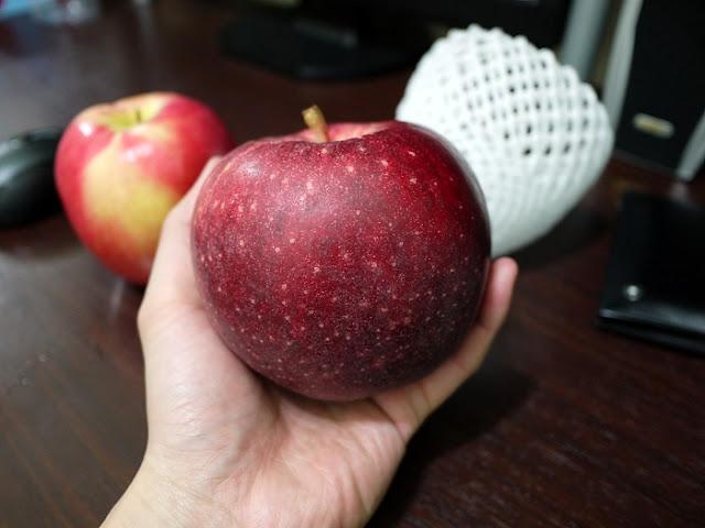 雷克斯是我: 蘋果的品格