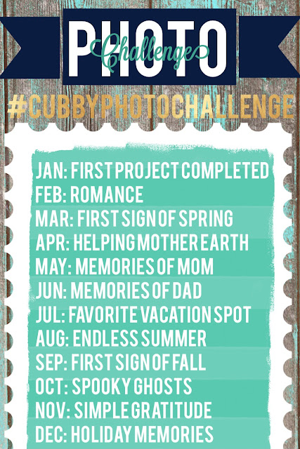 2016 Photo Challenge :: #CubbyPhotoChallenge