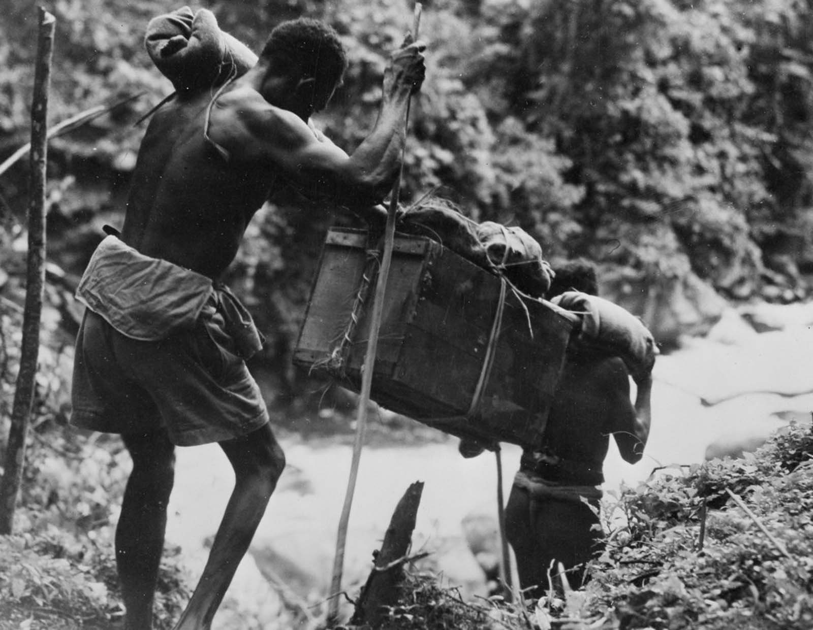 Carriers transport supplies through trackless jungle.