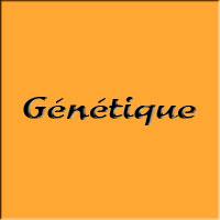 Génétique S4