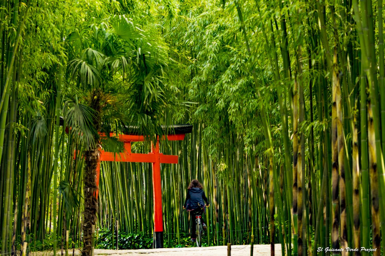 Lugares para conocer gente sangonera la verde