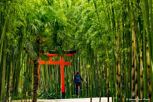 Tori de La Bambouseraie en Cévennes, Francia por El Guisante Verde Project