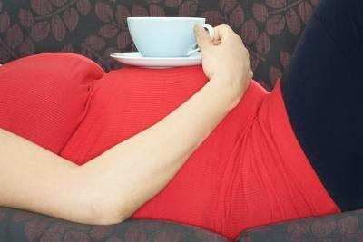 فوائد الشمر للحمل والحامل