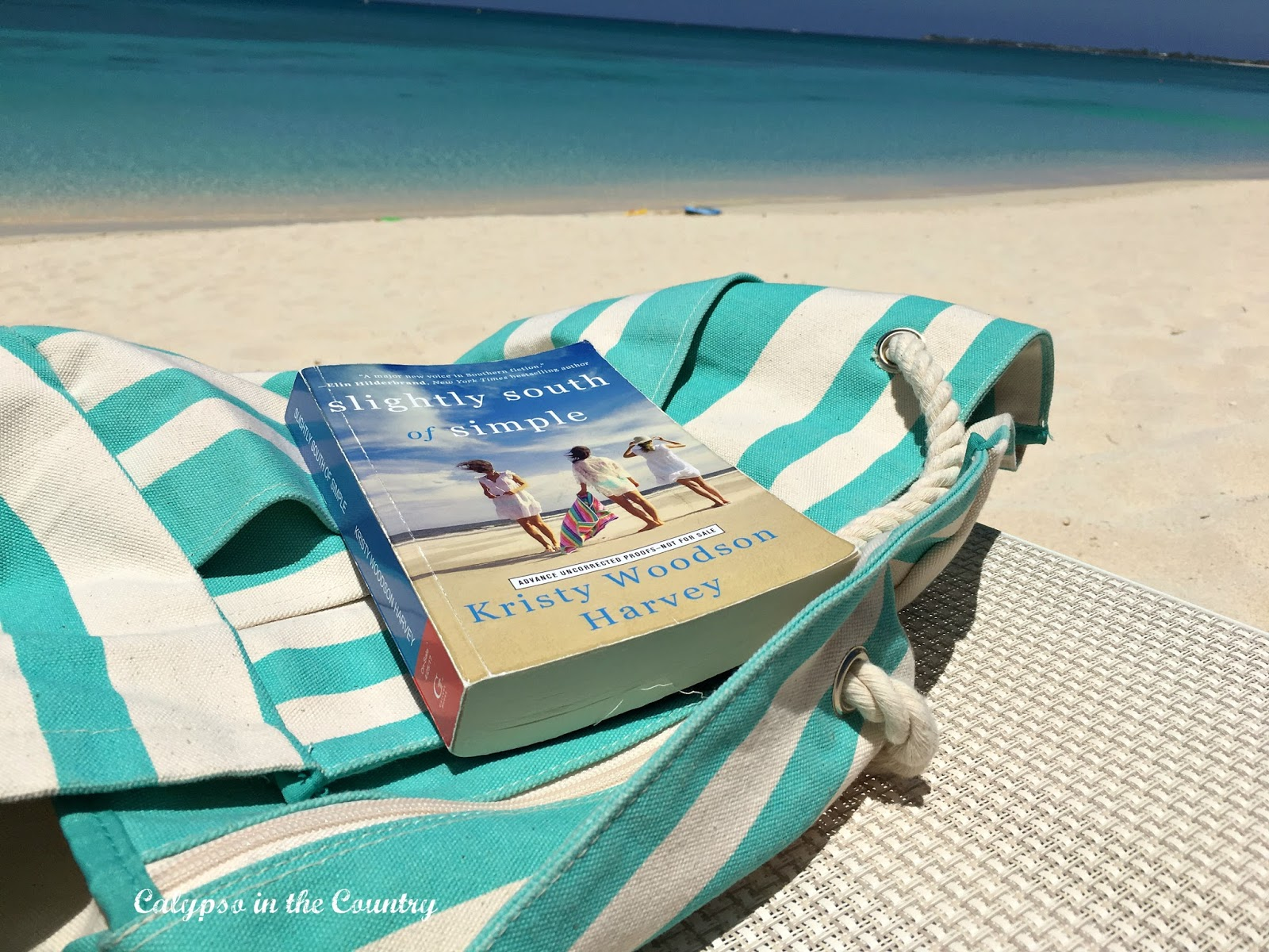 Southern Fiction on the beach - Slightly South of Simple Book Review