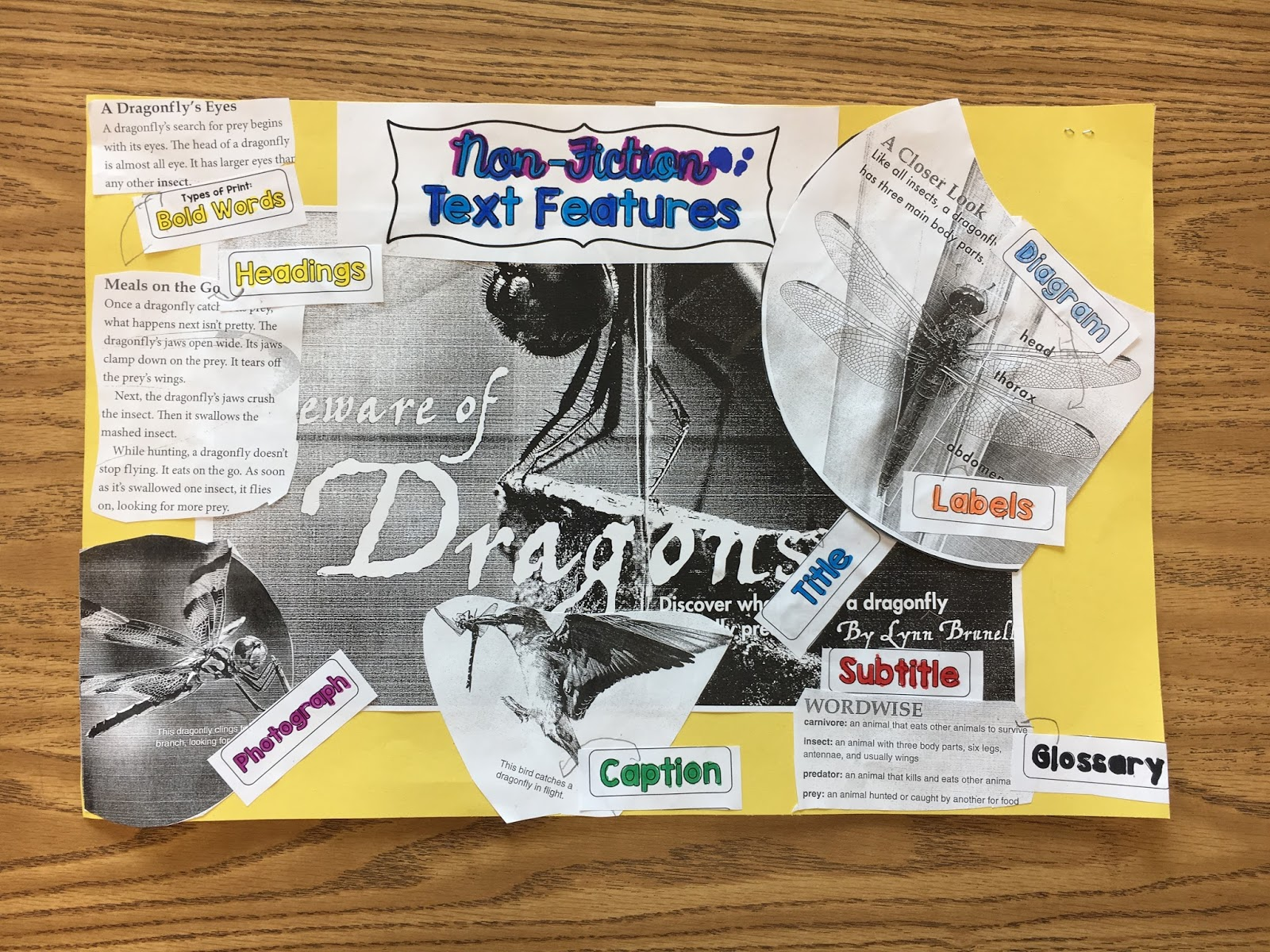 Figurative Language Text Features And A Celebrity Visit