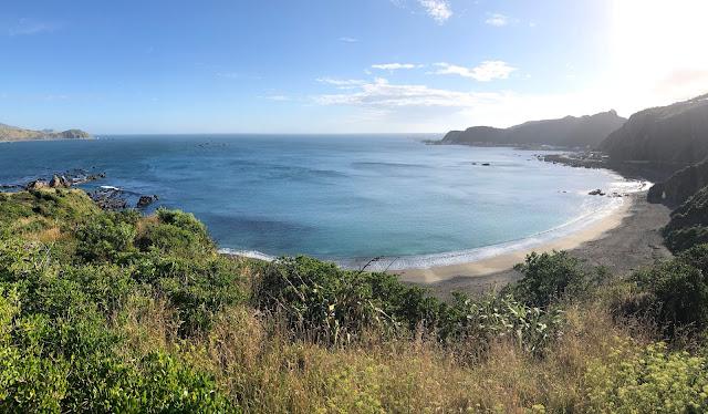 Nueva Zelanda playa