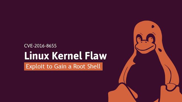 Kernel Linux bug