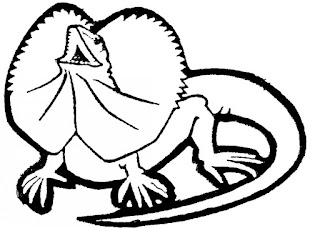 Images Of Best Of Lizard Coloring Sheet