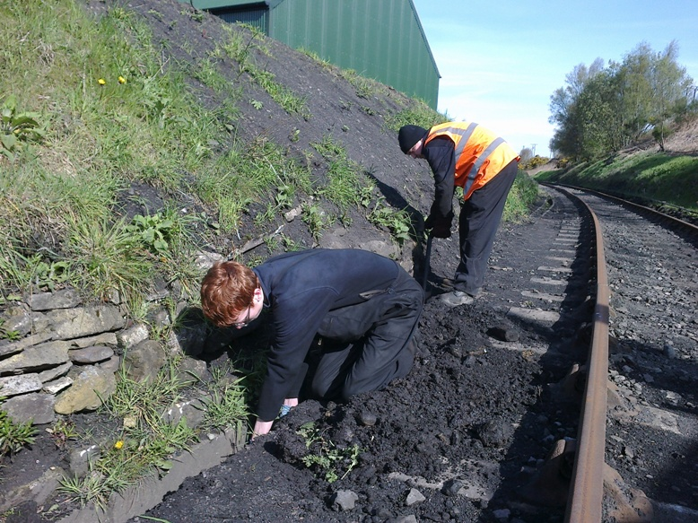 James and Mark clearing the drainage channel near the signalbox