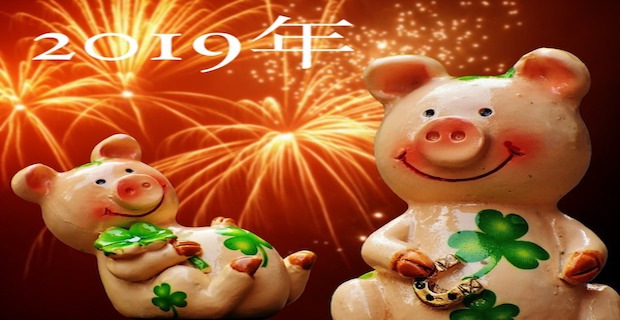 year of the pig, 2019, horoscope