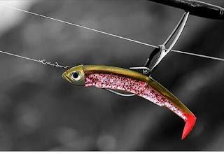 اختيار عدة صيد الكاستينج