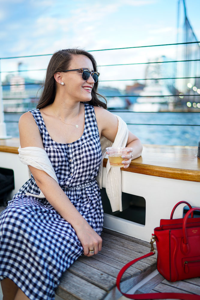 Maison Jules Gingham Dress, Summer dresses, Gingham print, Sailing on the Hudson, Hudson River