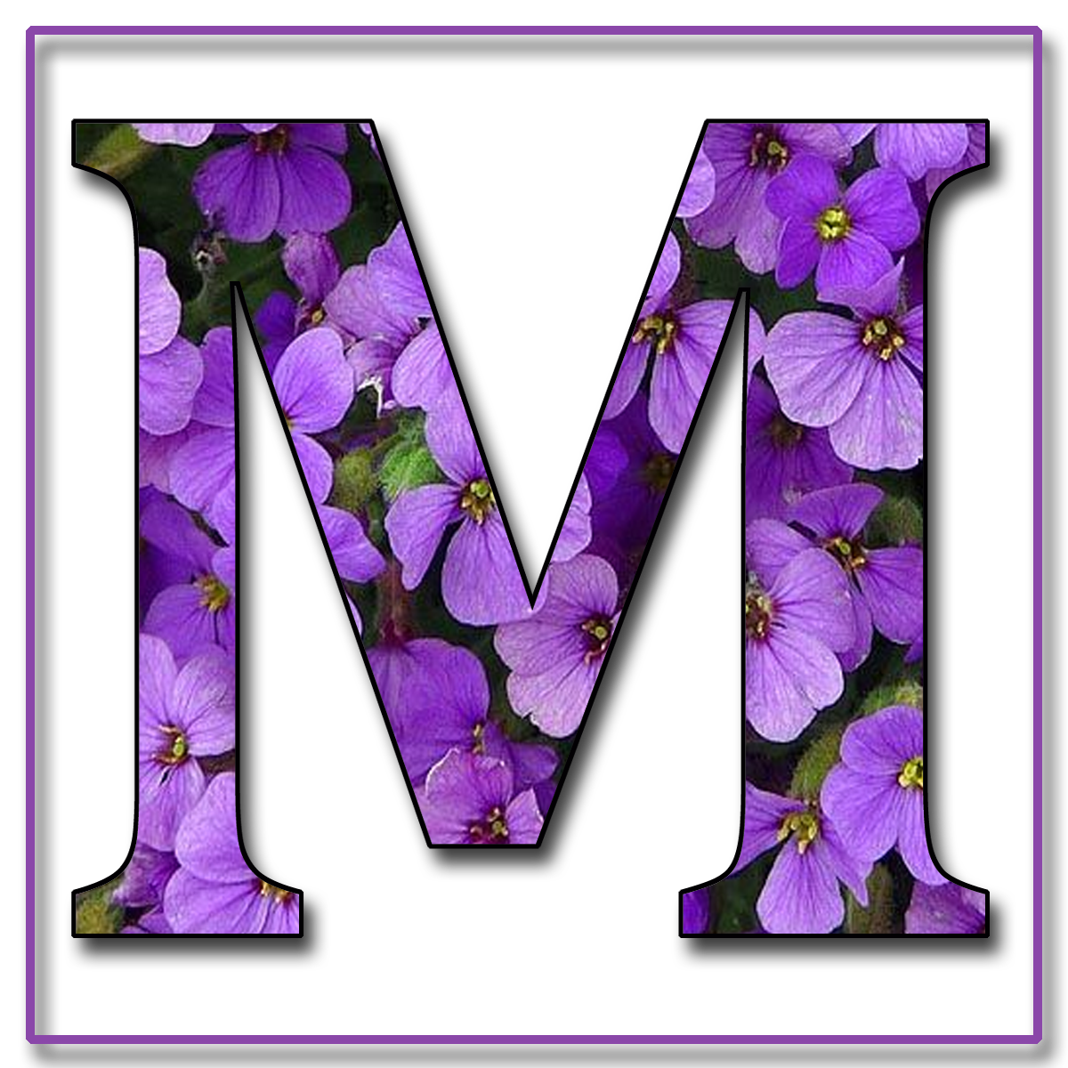 the letter m enchanted 39 s quot purple flowers quot free scrapbook 25175 | Capital Letter M1 Free Scra