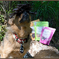 Full Moon Artisanal Dog Treats Review