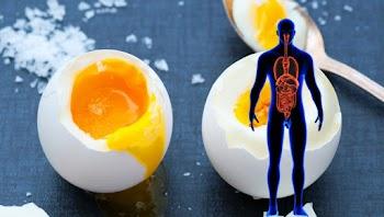 Να τι συμβαίνει στο Σώμα σας εάν Τρώτε 3 Αυγά κάθε μέρα για ένα Μήνα... [video]