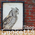 Shop Lucketts