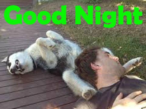 Funny Good Night Dog and Man Sleeping
