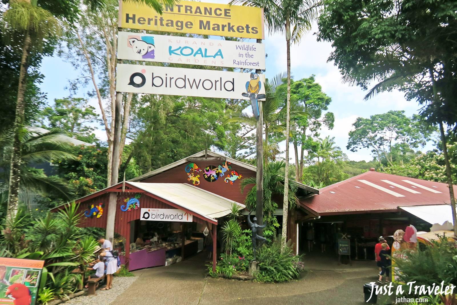 凱恩斯-庫蘭達-景點-鳥世界-無尾熊花園-自由行-旅遊-澳洲-Cairns-Kuranda-Bridworld-Koala-Gardens-Travel-Tourist-Attraction-Australia