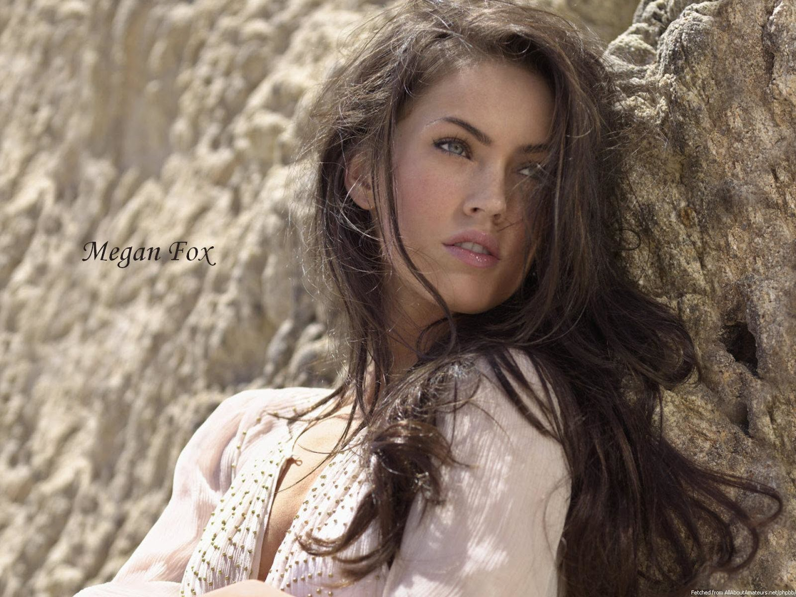 http://4.bp.blogspot.com/-ecA5ZMatWfU/UNV_xI6Q5tI/AAAAAAAApmU/10a8FRdYoUk/s1600/Megan+Fox+-+Hot+HD+Wallpapers+0004.jpg