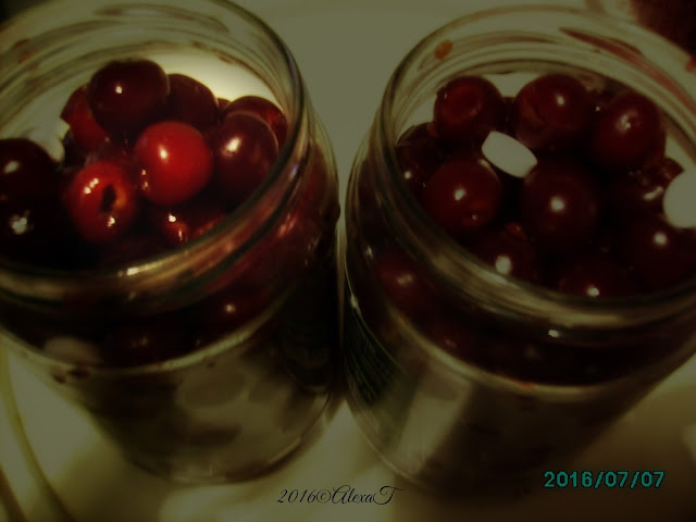 sour cherries. vișine