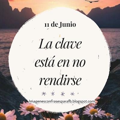 Frases Diarias del Día 11 de Junio