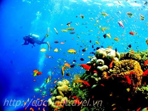 Kinh nghiệm du lịch phú quốc và những địa điểm du lịch tại Phú Quốc 2