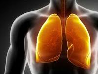 7 Pekerjaan Ini Bisa Mengancam Kesehatan Paru-paru Anda