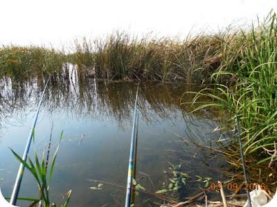 2 ore de pescuit tihnit si odihnitor