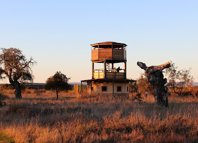 Observatorio junto al dormidero de grullas