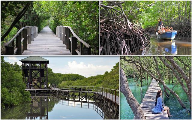 05. Taman Mangrove, Pemogan, Denpasar, Bali