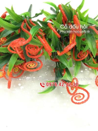 Phu kien hoa pha le ở Ha Noi