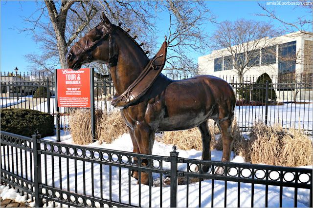 Escultura de Caballo Clydesdale en la Fábrica de la Cerveza Budweiser en New Hampshire