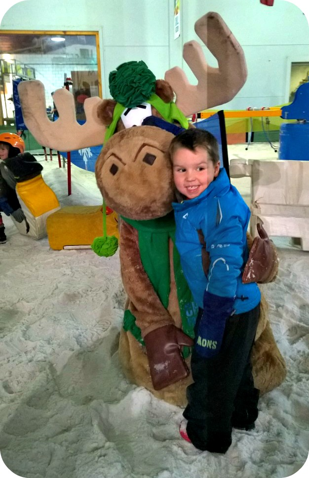 Mini Moose Land at Chill Factore