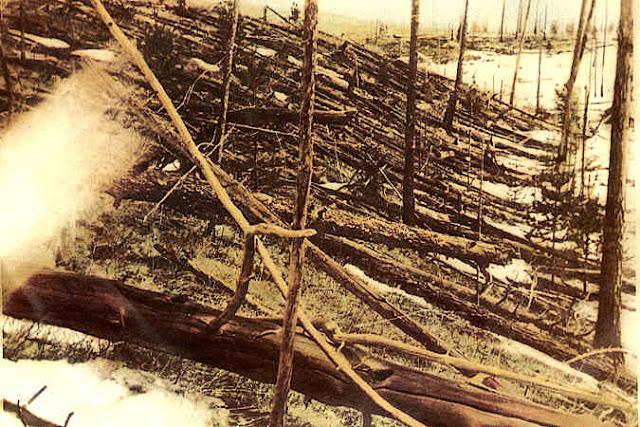 Fotografía sobre los campos de Tunguska, después del evento meteorológico.