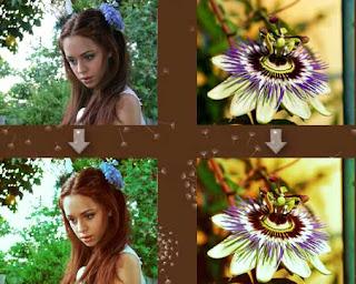 flower  vintage iluminacion