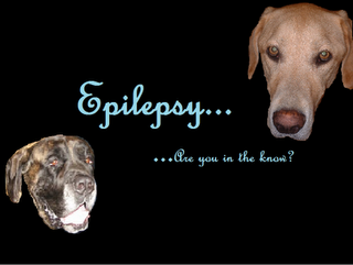Dogs Unite to Fight Epilepsy