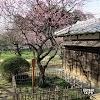 【弘道館】江戶時代日本最大的學校