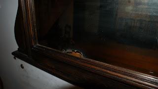 renowacja lustra posrebrzanego