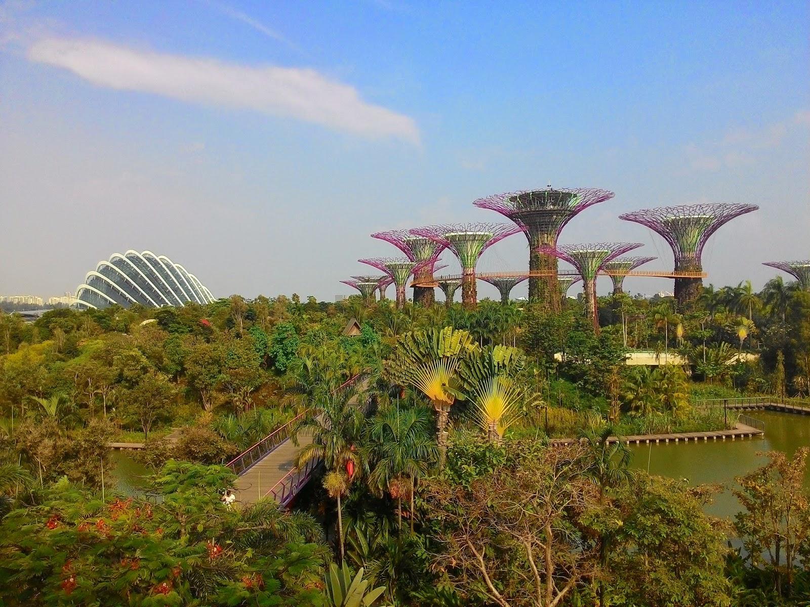 Alam Buatan Versi Garden By The Bay Singapura Jurnaland