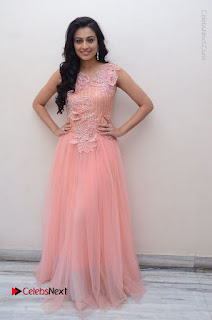 Actress Neha Hinge Stills in Pink Long Dress at Srivalli Teaser Launch  0157.JPG