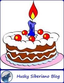 Primer Cumpleaños 1 Año de Husky Siberiano Blog