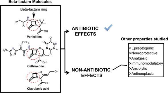 Epiphany: Autism and Non-Antibiotic Properties of Common